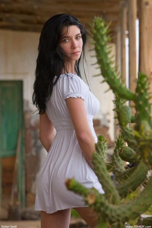 Милая брюнетка позирует среди кактусов 3 фото