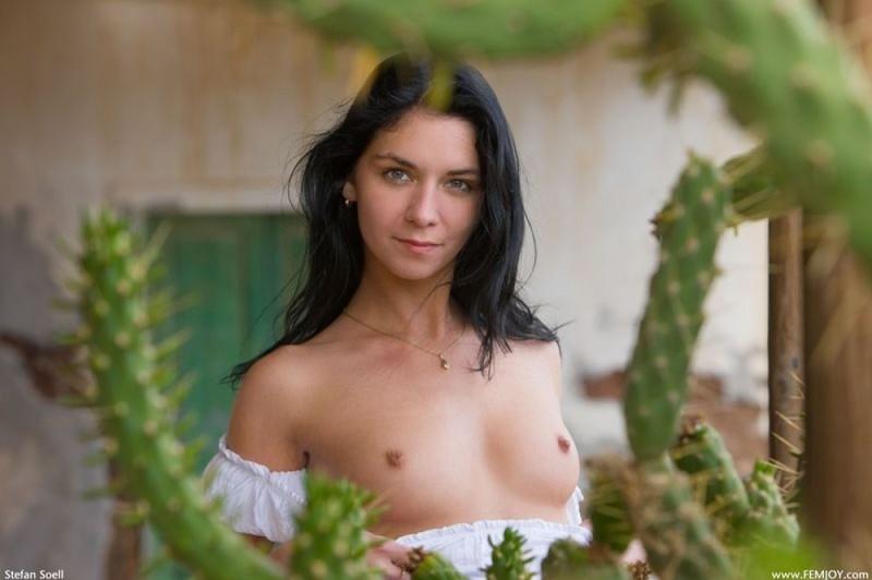 Милая брюнетка позирует среди кактусов 2 фото