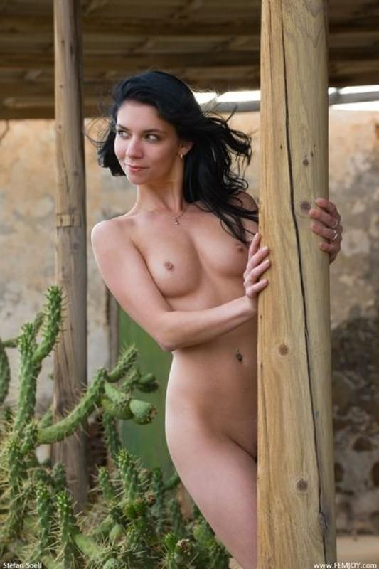 Милая брюнетка позирует среди кактусов 19 фото