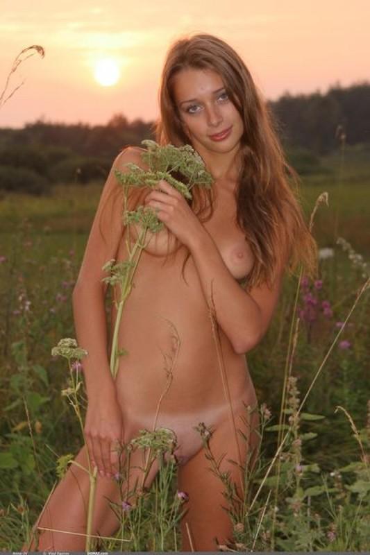 Голенькая нимфоманка позирует на закате в поле 11 фото